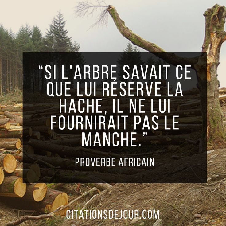 proverbe africain 2017