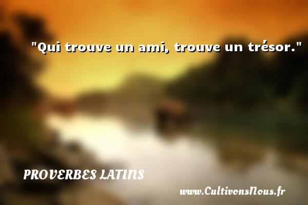 proverbe africain ami