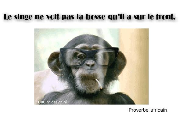 proverbe africain animaux