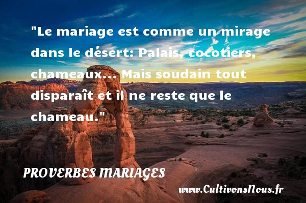 proverbe africain cocotier