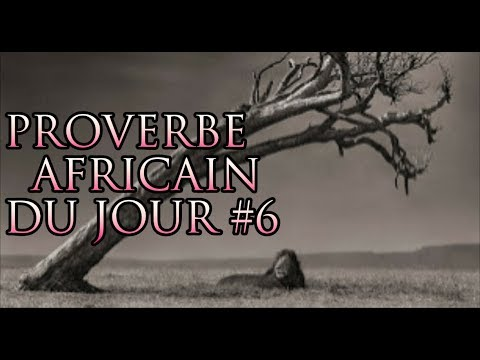 proverbe africain football