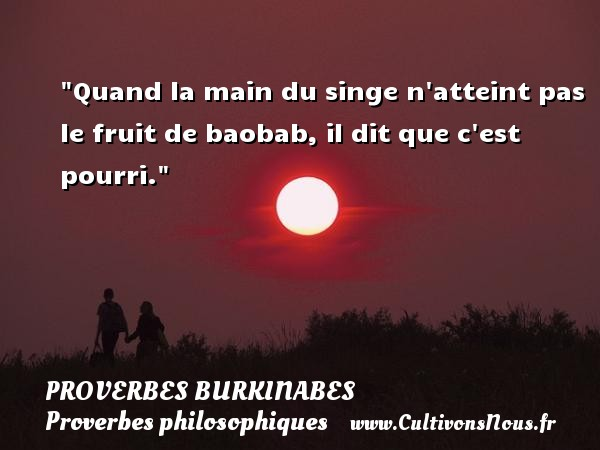proverbe africain fruit