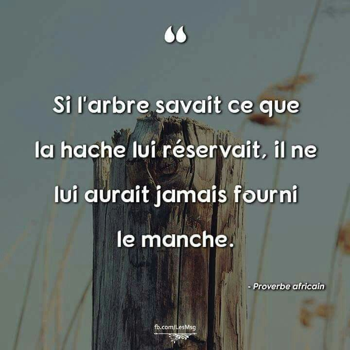 proverbe africain hache