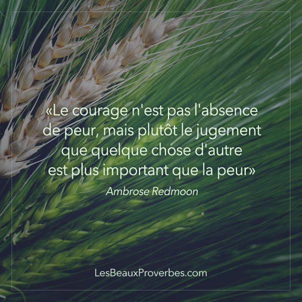 proverbe africain maladie