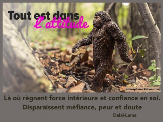 proverbe africain mefiance