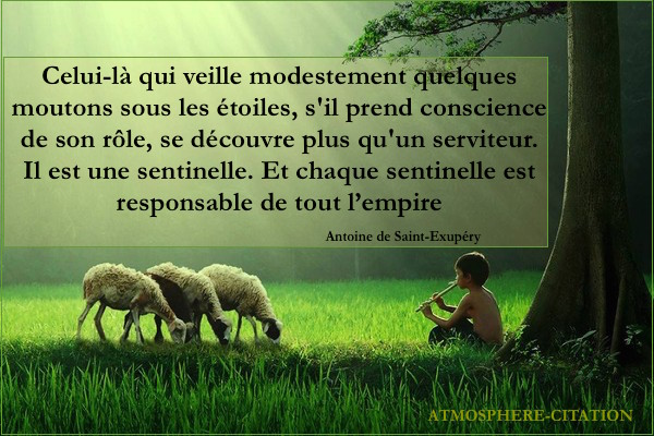 proverbe africain mouton