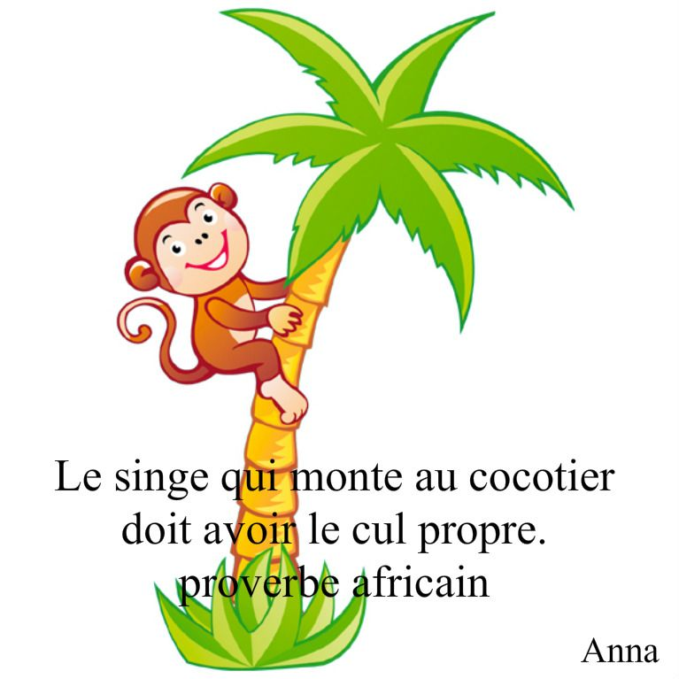 proverbe africain quand on monte au cocotier