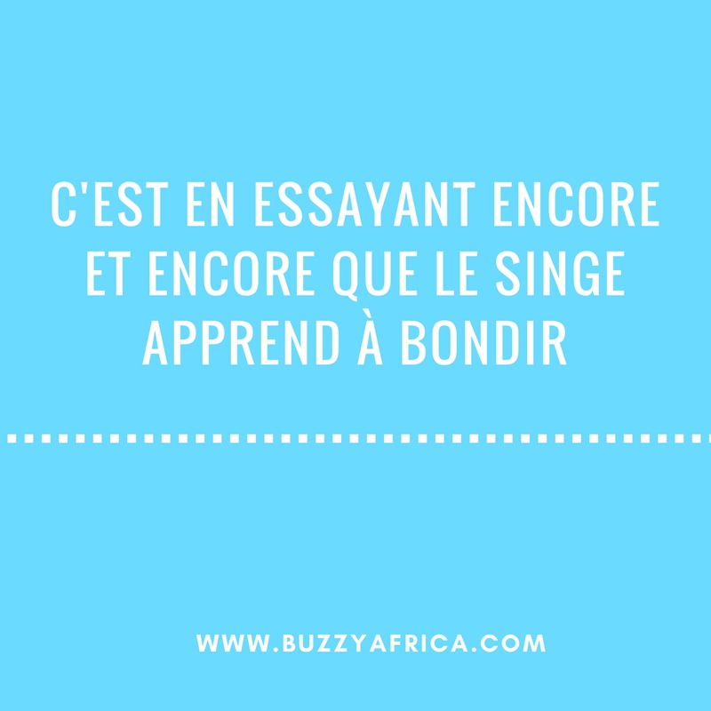 proverbe africain tortue