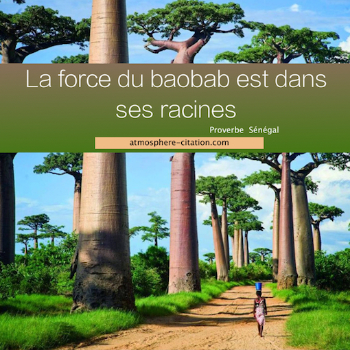 proverbe africain voyage