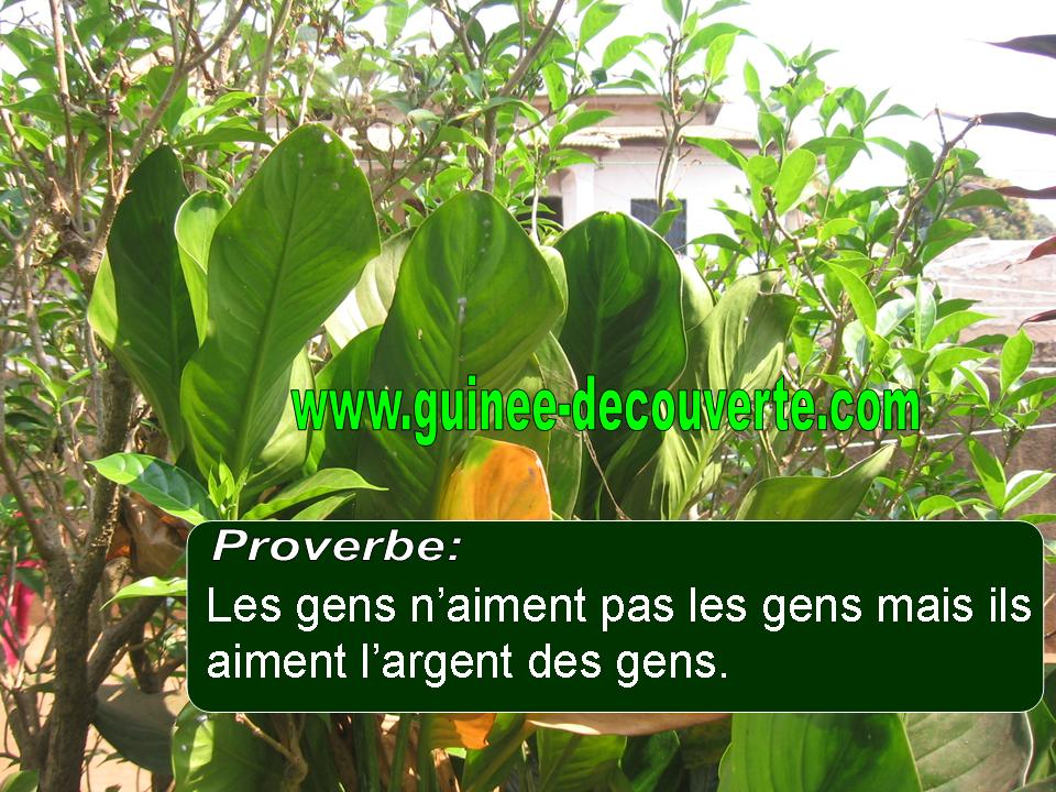 proverbe africain week end