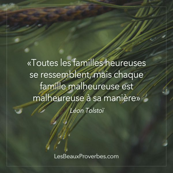 proverbe amour fort pdf