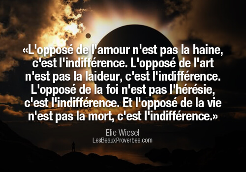 proverbe amour indifference