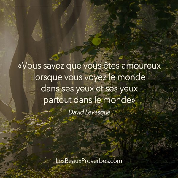 proverbe amour niece
