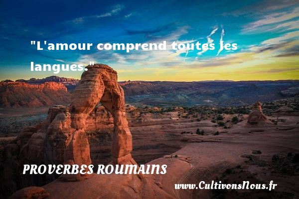 proverbe amour roumain