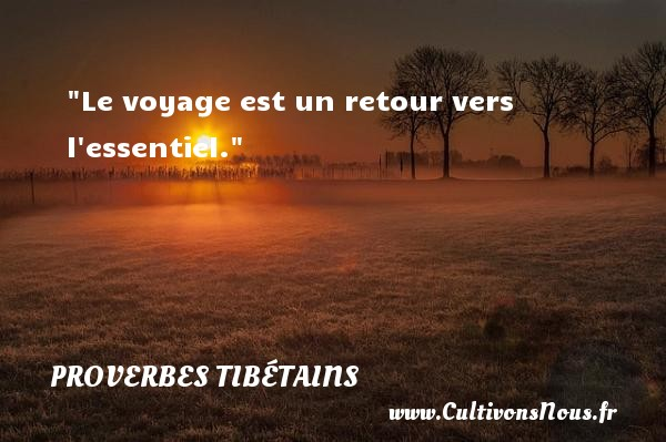 proverbe amour tibetain