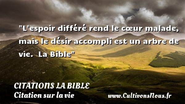 proverbe bible