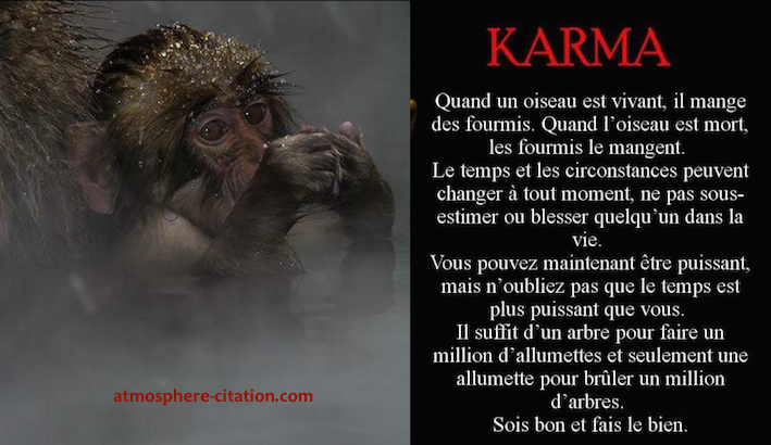 proverbe chinois 3 singes