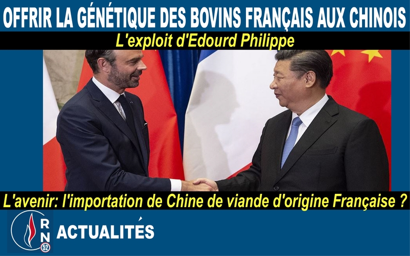 proverbe chinois business