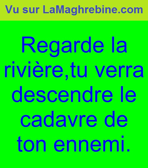 proverbe chinois ennemi riviere