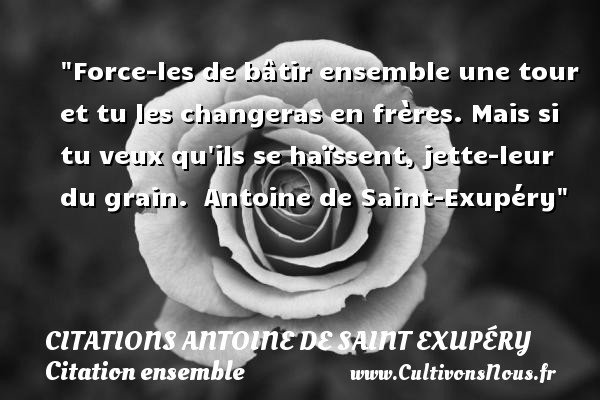 proverbe chinois frere