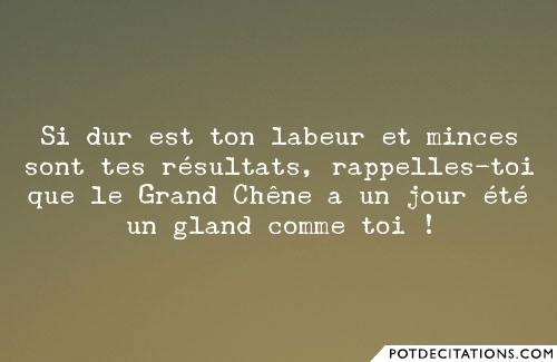 proverbe chinois gland