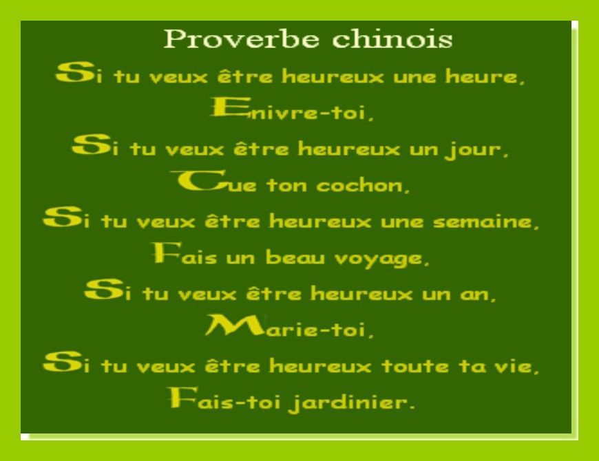 proverbe chinois humour gratuit