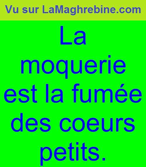 proverbe chinois moquerie