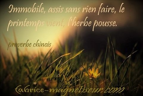 proverbe chinois obscurite