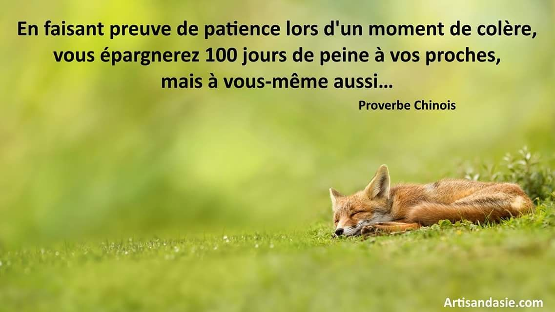 proverbe chinois patience