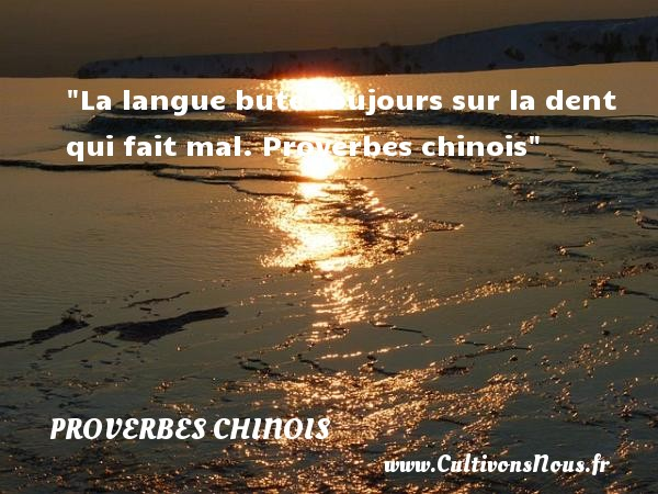 proverbe chinois quand les gros maigrissent