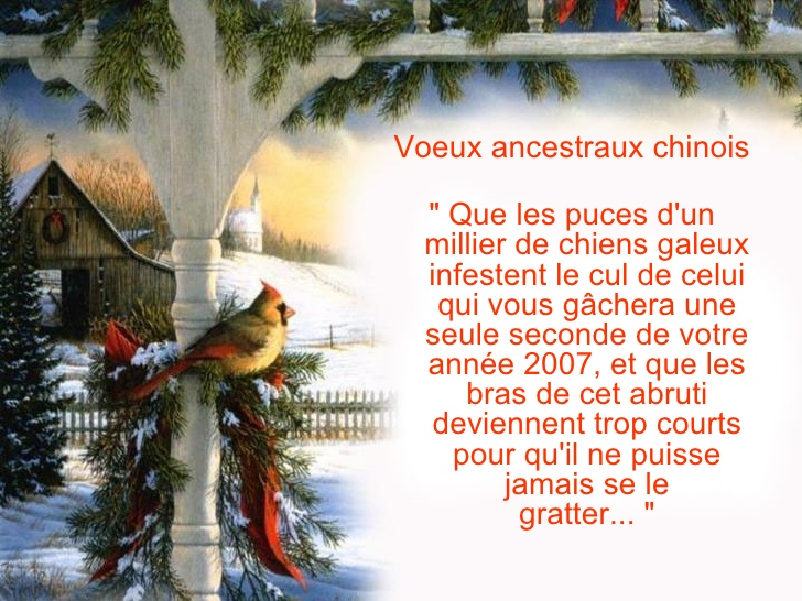 proverbe chinois que les puces
