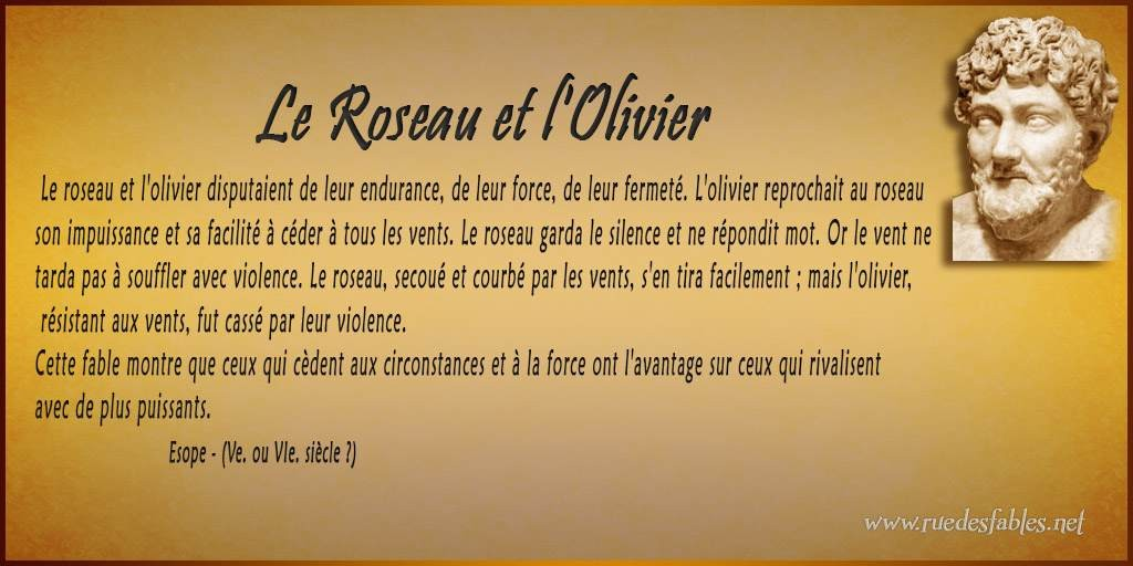 proverbe chinois roseau