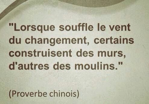 proverbe chinois vent moulin