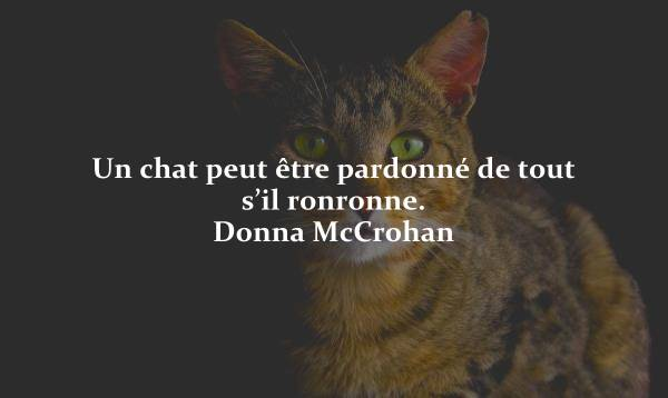 proverbe chinois yeux