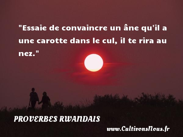 proverbe drole africain