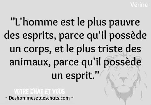 proverbe drole homme