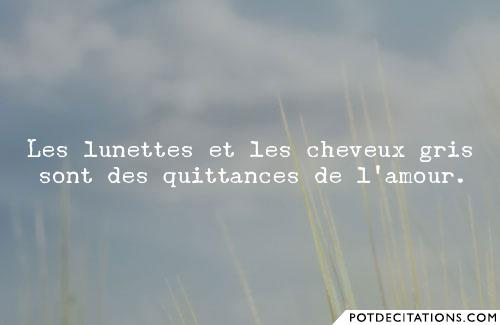 proverbe gris
